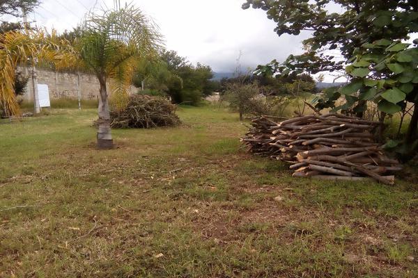 Foto de terreno habitacional en venta en ejido las tareas s/n , la soledad, san lorenzo cacaotepec, oaxaca, 8321529 No. 05
