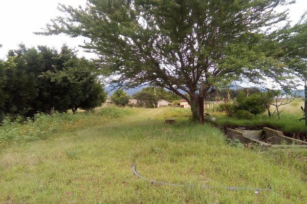 Foto de terreno habitacional en venta en ejido las tareas s/n , la soledad, san lorenzo cacaotepec, oaxaca, 8321529 No. 07