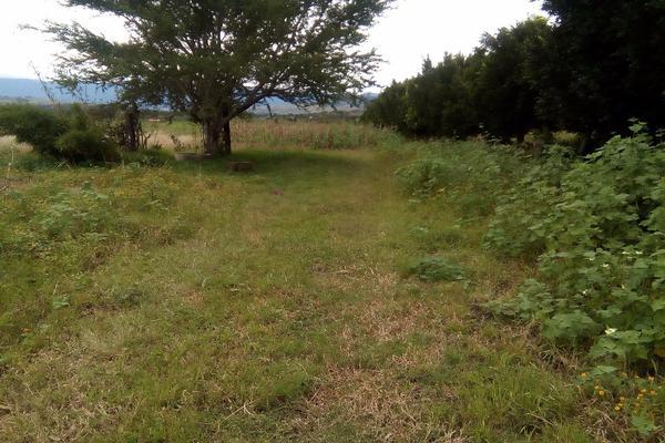 Foto de terreno habitacional en venta en ejido las tareas s/n , paraje los pintos, san lorenzo cacaotepec, oaxaca, 8321529 No. 04