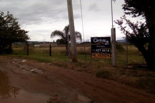 Foto de terreno habitacional en venta en ejido las tareas s/n , paraje los pintos, san lorenzo cacaotepec, oaxaca, 8321529 No. 06
