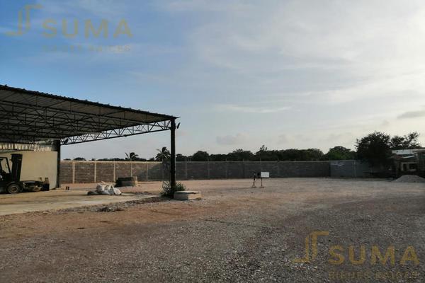 Foto de terreno habitacional en renta en  , ejido ricardo flores magón, altamira, tamaulipas, 18509334 No. 14