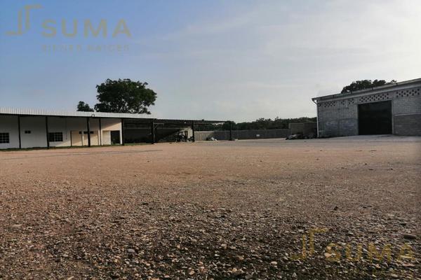 Foto de terreno habitacional en renta en  , ejido ricardo flores magón, altamira, tamaulipas, 18509334 No. 18