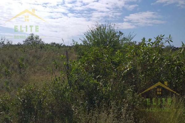 Foto de terreno habitacional en renta en  , ejido ricardo flores magón, altamira, tamaulipas, 19231040 No. 04
