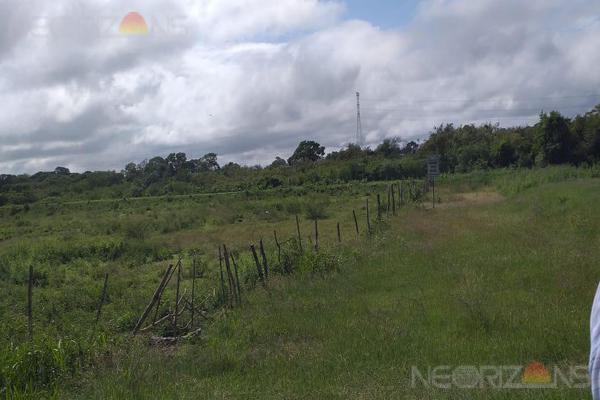Foto de terreno habitacional en renta en  , ejido ricardo flores magón, altamira, tamaulipas, 19291425 No. 05