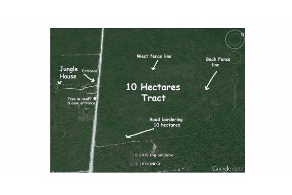 Foto de terreno comercial en venta en  , ejido, tulum, quintana roo, 2630725 No. 02