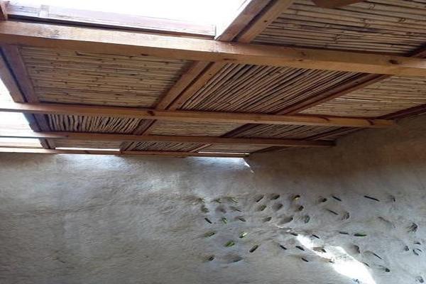 Foto de casa en renta en  , ejidos de san pedro mártir, tlalpan, df / cdmx, 0 No. 16