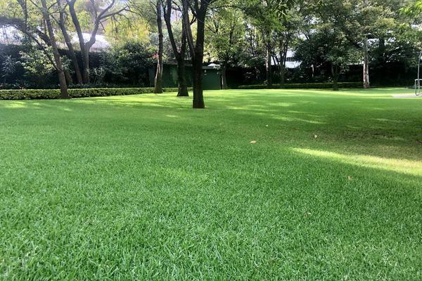 Foto de departamento en venta en ekos del pedregal, camino a santa teresa , jardines del pedregal, álvaro obregón, df / cdmx, 12843998 No. 44