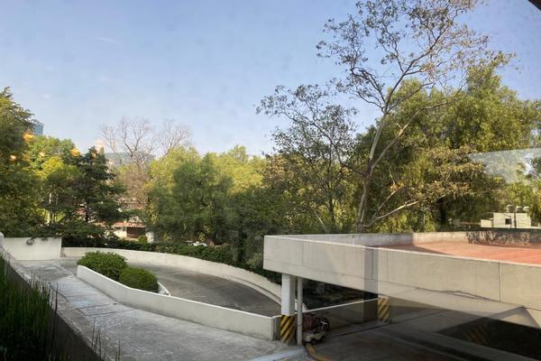 Foto de departamento en venta en ekos del pedregal, camino a santa teresa , jardines del pedregal, álvaro obregón, df / cdmx, 12843998 No. 47