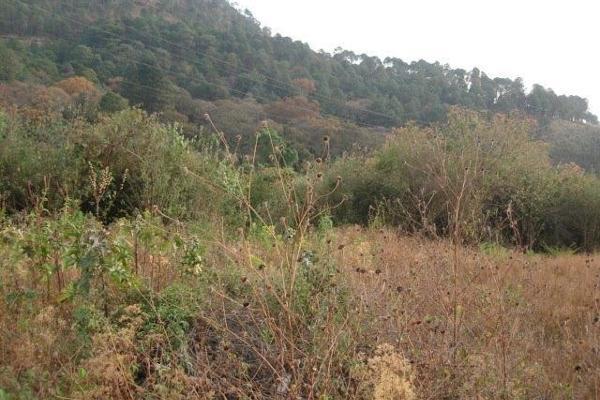 Foto de terreno habitacional en venta en el aguacate , santa magdalena tilostoc, valle de bravo, méxico, 5301918 No. 04