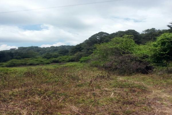 Foto de terreno habitacional en venta en el aguacate , santa teresa tilostoc, valle de bravo, méxico, 5723643 No. 02