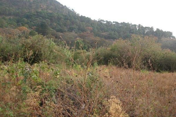 Foto de terreno habitacional en venta en el aguacate , santa teresa tilostoc, valle de bravo, méxico, 5723643 No. 04