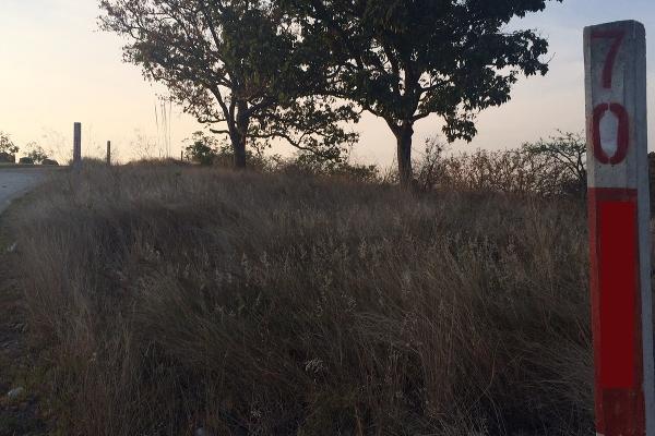 Foto de terreno habitacional en venta en  , el arenal, el arenal, jalisco, 3108512 No. 13