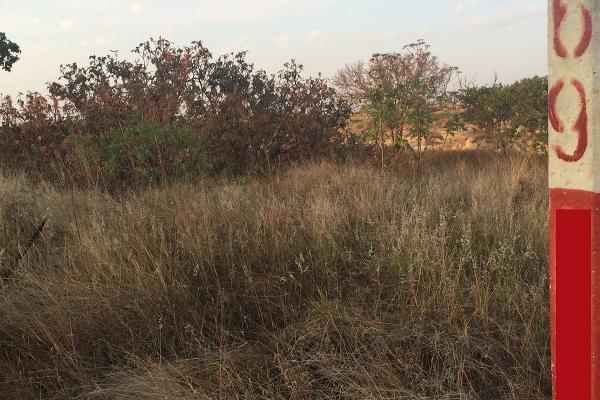 Foto de terreno habitacional en venta en  , el arenal, el arenal, jalisco, 3108512 No. 14