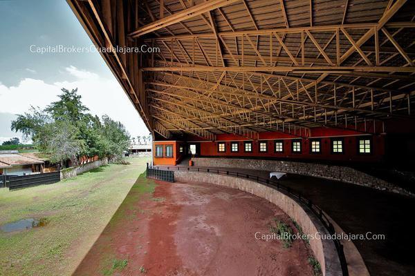 Foto de rancho en venta en  , el arenal, el arenal, jalisco, 5870818 No. 03