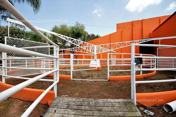 Foto de rancho en venta en  , el arenal, el arenal, jalisco, 5870818 No. 05