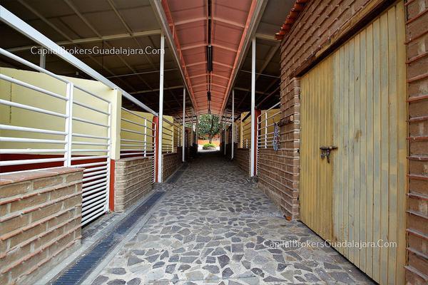 Foto de rancho en venta en  , el arenal, el arenal, jalisco, 5870818 No. 07