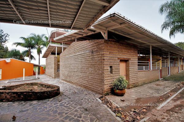 Foto de rancho en venta en  , el arenal, el arenal, jalisco, 5870818 No. 18