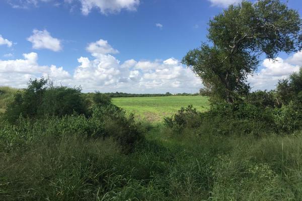 Foto de terreno habitacional en venta en el ballineño , el sabino (ejido), matamoros, tamaulipas, 5893719 No. 05