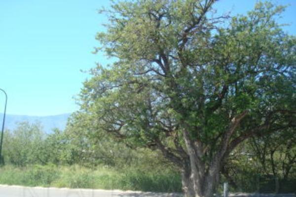 Foto de terreno habitacional en venta en  , el barrial, santiago, nuevo león, 4670481 No. 03