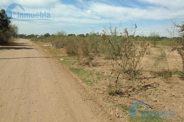 Foto de terreno habitacional en venta en  , el burrión, guasave, sinaloa, 8788581 No. 09