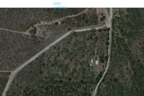 Foto de terreno industrial en venta en  , el carmen, el carmen, nuevo león, 18068357 No. 02