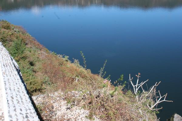 Foto de terreno habitacional en venta en el clavel , valle de bravo, valle de bravo, méxico, 4634786 No. 02