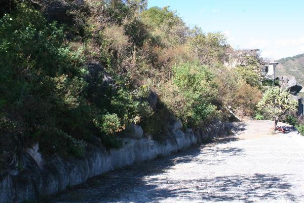 Foto de terreno habitacional en venta en el clavel , valle de bravo, valle de bravo, méxico, 4634786 No. 04