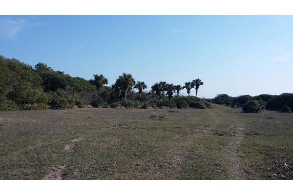Foto de terreno comercial en venta en  , el copital, medellín, veracruz de ignacio de la llave, 2628505 No. 06