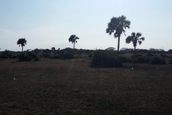 Foto de terreno comercial en venta en  , el copital, medellín, veracruz de ignacio de la llave, 2628505 No. 08
