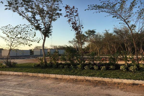 Foto de terreno habitacional en venta en el cortijo, hacienda residencial , dzibilchaltún, mérida, yucatán, 3606687 No. 03