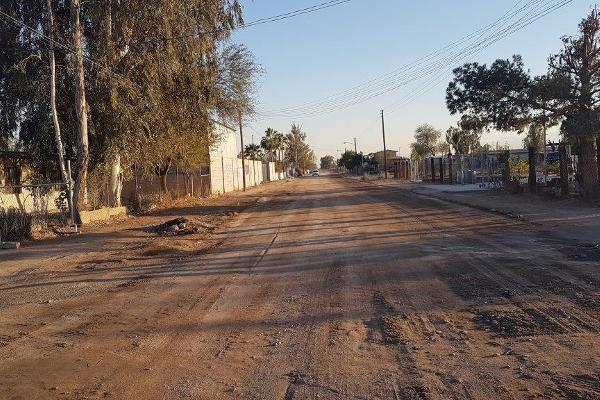 Foto de terreno habitacional en renta en el datil , granjas santa cecilia, mexicali, baja california, 5873334 No. 04