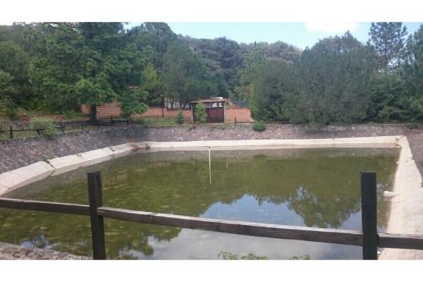 Foto de terreno habitacional en venta en  , jardines del sur 6a sección, tulancingo de bravo, hidalgo, 10203185 No. 09