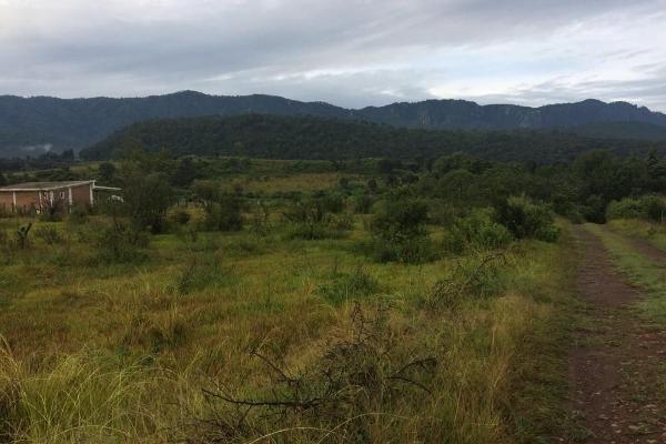 Foto de terreno habitacional en venta en el durazno , valle de bravo, valle de bravo, méxico, 5943914 No. 02