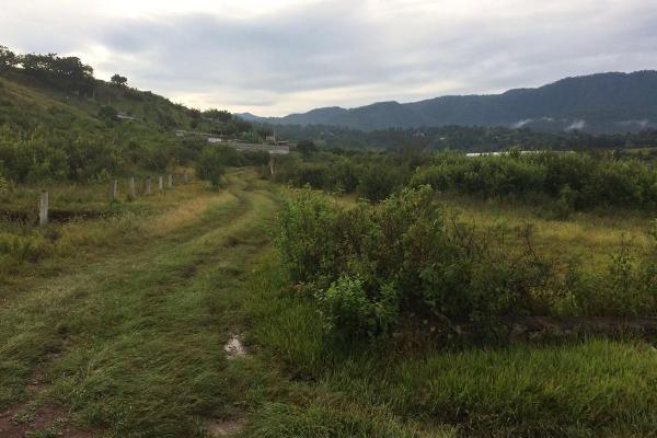 Foto de terreno habitacional en venta en el durazno , valle de bravo, valle de bravo, méxico, 5943914 No. 03
