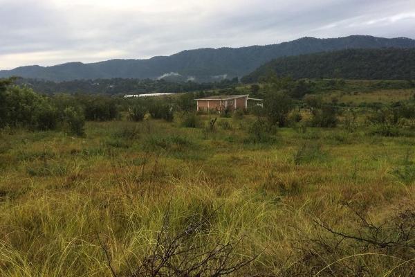 Foto de terreno habitacional en venta en el durazno , valle de bravo, valle de bravo, méxico, 5943914 No. 04