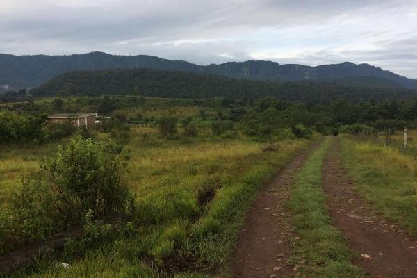 Foto de terreno habitacional en venta en el durazno , valle de bravo, valle de bravo, méxico, 5943914 No. 05
