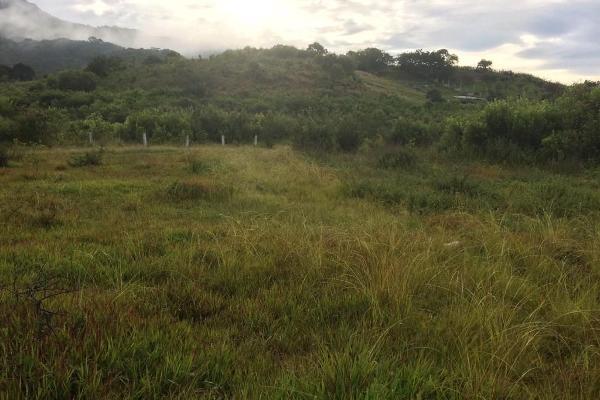 Foto de terreno habitacional en venta en el durazno , valle de bravo, valle de bravo, méxico, 5943914 No. 06