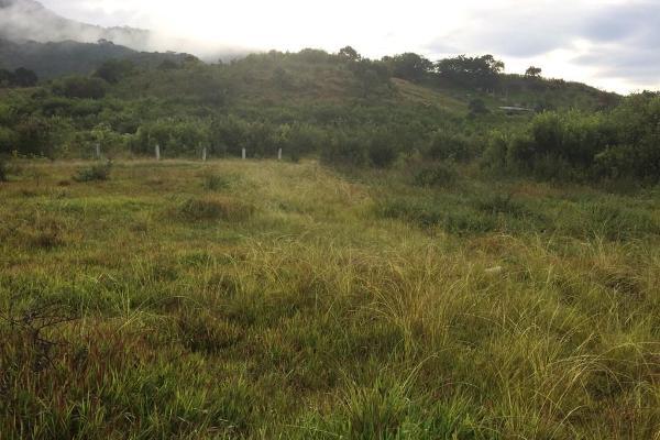 Foto de terreno habitacional en venta en el durazno , valle de bravo, valle de bravo, méxico, 5943914 No. 07