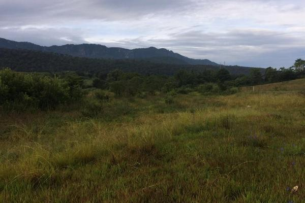 Foto de terreno habitacional en venta en el durazno , valle de bravo, valle de bravo, méxico, 5943914 No. 08