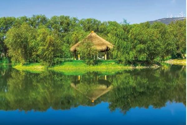 Foto de terreno habitacional en venta en el encino , el milagro, huimilpan, querétaro, 11425539 No. 08