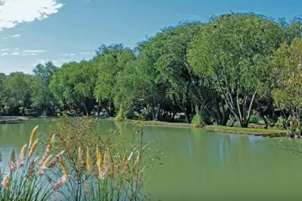 Foto de terreno habitacional en venta en el encino , el milagro, huimilpan, querétaro, 11425539 No. 10