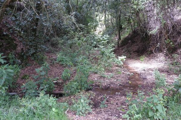 Foto de terreno habitacional en venta en el escobar s/n , tlazala, isidro fabela, méxico, 5920228 No. 06