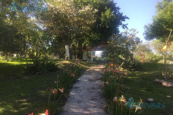Foto de casa en venta en  , el fraile, montemorelos, nuevo león, 13316178 No. 06