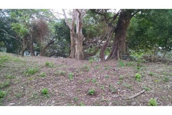 Foto de terreno habitacional en venta en el guasimal , guasimal, medellín, veracruz de ignacio de la llave, 5346327 No. 06