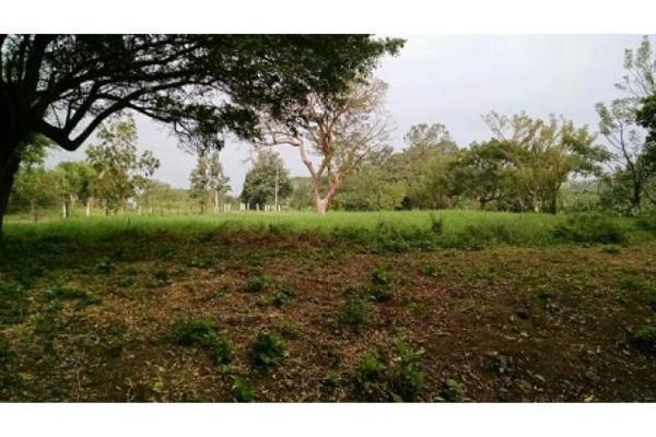 Foto de terreno habitacional en venta en el guasimal , guasimal, medellín, veracruz de ignacio de la llave, 5346327 No. 09