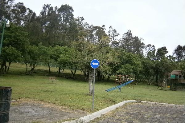 Foto de terreno habitacional en venta en  , el hallazgo, san pedro cholula, puebla, 2641203 No. 03