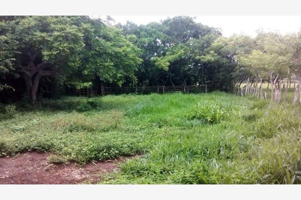 Foto de rancho en venta en el hato , el bayo, alvarado, veracruz de ignacio de la llave, 6183315 No. 04