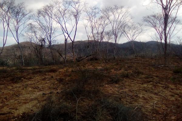 Foto de terreno habitacional en venta en el huilote , campo acosta, tomatlán, jalisco, 14031853 No. 09