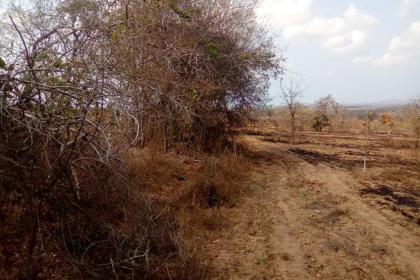 Foto de terreno habitacional en venta en el huilote , campo acosta, tomatlán, jalisco, 14031853 No. 10