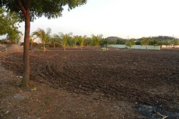 Foto de terreno comercial en venta en  , el limón de los ramos, culiacán, sinaloa, 7887216 No. 10